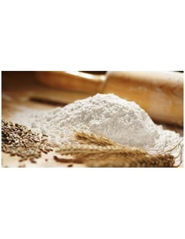 Glutine di Grano gr.500